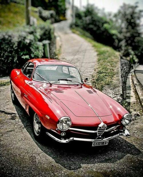 гоночный автомобиль Alfa Romeo Giulietta SS - 12